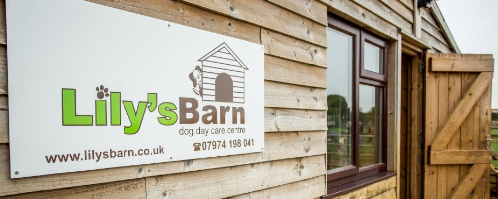 Contact Lily S Barn Dog Day Care Centre Enquiry Form And
